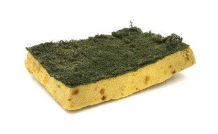 Resultado de imagem para esponja suja